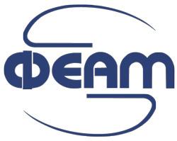 gruppa-kompanii-feam